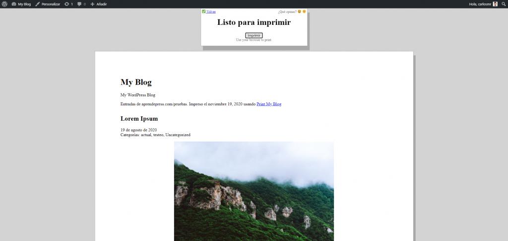 Impresión de una web con Print My Blog